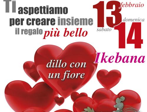 Speciale San Valentino ikebana Fiori